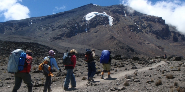 Ascension du Kilimanjaro par la voie Machame en petit groupe